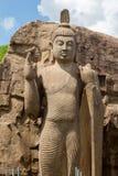 Avukana Standing Buddha Statue Stock Photography
