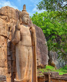 Avukana statua jest trwanie statuą Buddha Sri Lanka Obrazy Stock