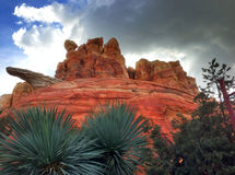 Avventura Carsland di Disney California Immagine Stock