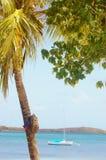 Avventura della spiaggia della palma dei sandali della spiaggia dello zaino Immagini Stock