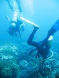 Avventura tropicale di immersione con bombole Immagine Stock