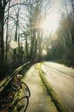 Avventure della bici Fotografia Stock Libera da Diritti