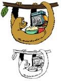 Avventure nel bradipo Fotografia Stock
