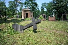 Avverkat gravkors arkivbilder