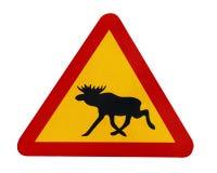 Avvertimento del segnale stradale per le alci Immagini Stock Libere da Diritti