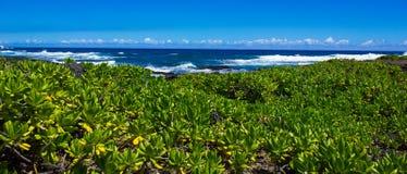 Avvicinamento dell'oceano Fotografia Stock Libera da Diritti