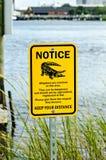 Avviso del segnale di pericolo dell'alligatore vicino ad acqua Immagine Stock Libera da Diritti