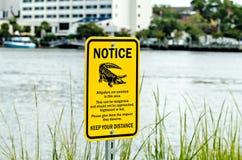Avviso del segnale di pericolo dell'alligatore vicino ad acqua Immagini Stock Libere da Diritti