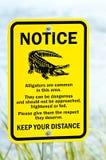 Avviso del segnale di pericolo dell'alligatore vicino ad acqua Fotografia Stock