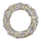 Avvolga dai rami e dalla lavanda secchi su fondo bianco Fotografia Stock Libera da Diritti