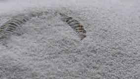 Avvolga la sabbia di salto per rivelare un'ammonite fossile video d archivio