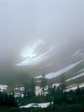 Avvolto nella nebbia al passaggio della cascata, Stephen Mather Wilderness, cascate del nord parco nazionale, Washington Immagini Stock Libere da Diritti