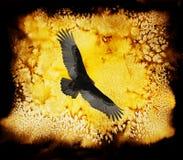 Avvoltoio della Turchia con la priorità bassa dell'acquerello. Immagine Stock Libera da Diritti