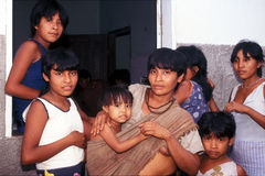 awa巴西当地guaja的印地安人 免版税库存图片