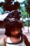 awa巴西guaja印第安当地年轻人 库存照片