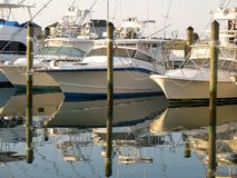 Awaiting Anglers Royalty Free Stock Image