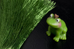 Awaiting frog king. Little frog king from fairy tale with cheeckies and a crown is sitting next to shimmering green thread blundles Stock Photo