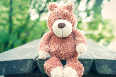 Awaiting for owner. Forgotten teddy bear toy. Sadness. Royalty Free Stock Images