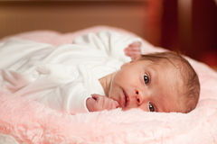 Awake little newborn Royalty Free Stock Photography