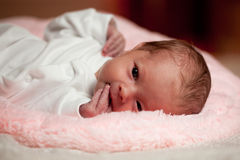 Awake little newborn Royalty Free Stock Photo