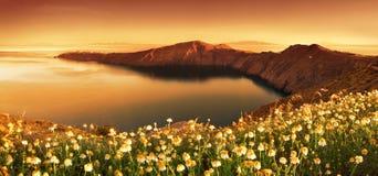 Awaken. Sunrise Wildflowers on the island of Santorini Stock Images