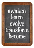 Awaken, learn, evolve on blackboard Royalty Free Stock Images