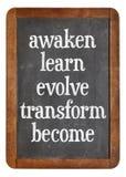 Awaken, learn, evolve on blackboard Royalty Free Stock Images