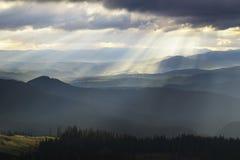 Awakening. Carpathians National Park, Biosphere Reserve Royalty Free Stock Images