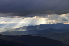 Awakening. Carpathians National Park, Biosphere Reserve Royalty Free Stock Photo