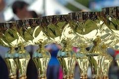 Free Award Stock Photo - 704350
