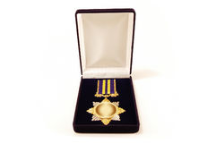Award in a case Stock Photography