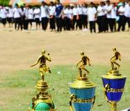 Award cups. For winner each sport in school stock image