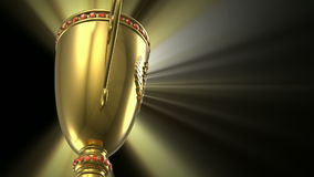 Award winning and championship concept stock footage