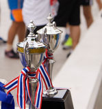 Award winning of trophy cup. On playing field background stock photography