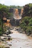 Awash National Park. In Ethiopia Stock Photos