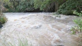 Awash River stock video