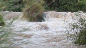 Awash River stock video footage