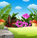 An awasome view with the natural forest condition vector illustration