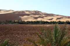 Awbari oasis Stock Photos