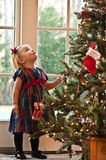 In Awe of the Tree. Little Girl Staring Up At The Christmas Tree Royalty Free Stock Image