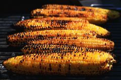 Awesome American grilled corn. Grilled vegetables is significant stock photo