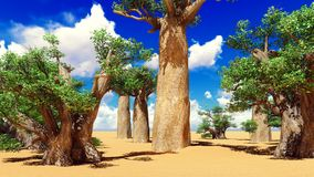 Awesome baobabs in African savannah 3d rendering Stock Photos