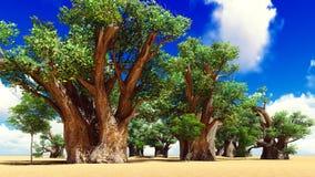 Awesome baobabs in African savannah 3d rendering Stock Image