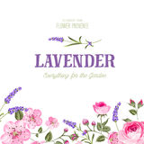 Awesome lavender label. Awesome label with flowers of lavender and sakura. Bridal shower invitation with white background. Vintage floral invitation for spring Stock Images