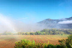 Awesome misty farm field against mountains Royalty Free Stock Images