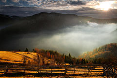 An awesome mountain landscape with sun, fog, and f. Orrest in the mountains of Romania Stock Photos
