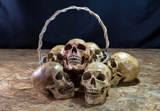 Awesome pile of skull with basket, Still Life Stock Photos