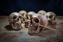 Awesome pile of skull on a wooden table, Still Life Stock Photo