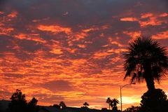 Awesome sunset Royalty Free Stock Image