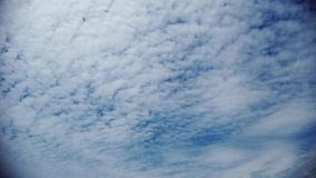 Awesome time lapse clouds with fluffy white  alto cumulus rolls in the air. Guided by wind stock video